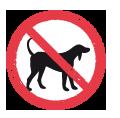 pikto-hund